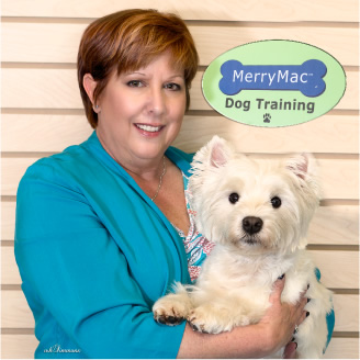 Tina McCain - Atlanta's most sought-after dog trainer  and owner of MerryMac Dog Training in Woodstock, GA. Dog and Puppy Training Classes at  MerryMac Training: Puppy house training, Puppy and Adult Dog Obedience, Barking Dog, Aggressive Dog, Nosework, Dog Tricks, Off-leash, Good Citizen and more. Atlanta dog trainer, atlanta dog training, woodstock dog trainer, woodstock dog training, east cobb dog training, puppy training, dog obedience training, dog trainer, barking dog, dog separation anxiety, private dog training lessons, canine good citizen, k9 nosework, teaching a dog tricks, obedience class for puppy, house training a dog, akc trainer, canine kindergarten, training an aggressive dog. Group and private lessons in Woodstock, Marietta, East Cobb, Alpharetta, Roswell, Atlanta, Georgia